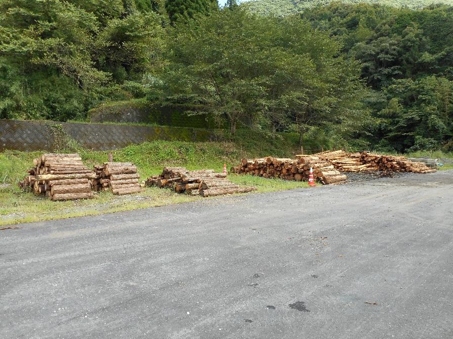 木材状況.jpg